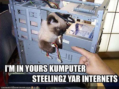 don't steal my internet